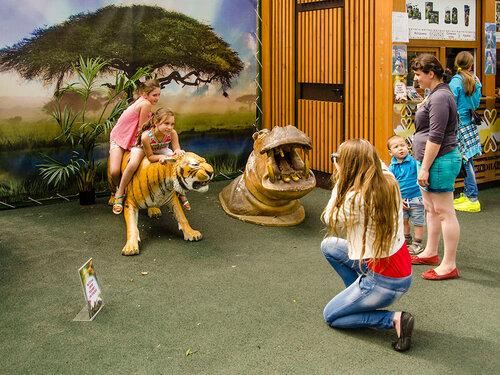 Сценки в зоопарке.