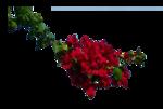 306-flower-LB TUBES.png