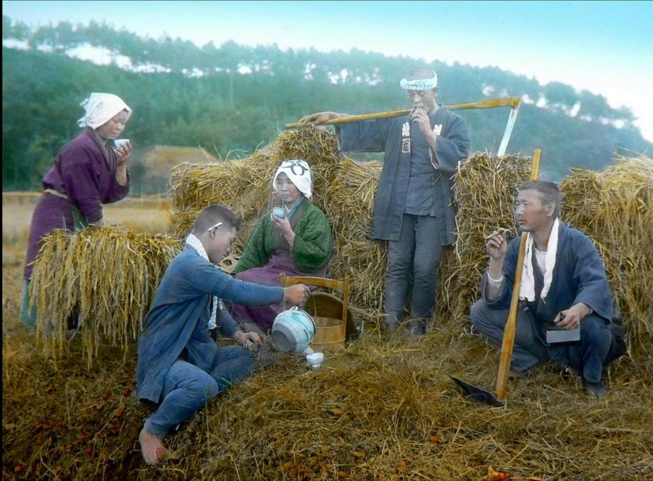 Перерыв в работе фермеров