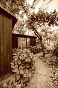 фотограф Ку: фотосъемка Josef Sudek. Дом Йозефа Судека