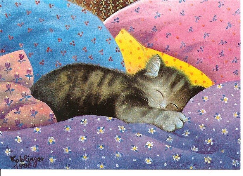 спи давай открытки яркие месте