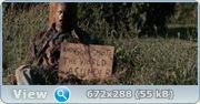 Земля осиновых кольев / Stake Land (2010/DVDScr)