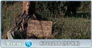 ����� �������� ������ / Stake Land (2010/DVDScr)