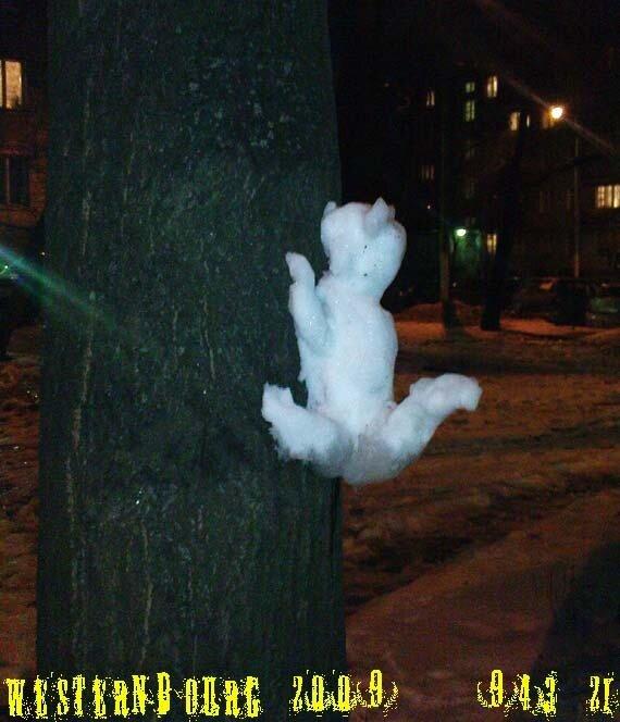 943.21 Снежный кот. 28 дек. 2009