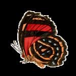 Бабочки  0_6b149_20229a45_S