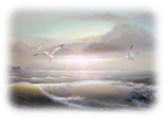 Misted By Sorensen_Designs -Seascape Two Tube 507.png