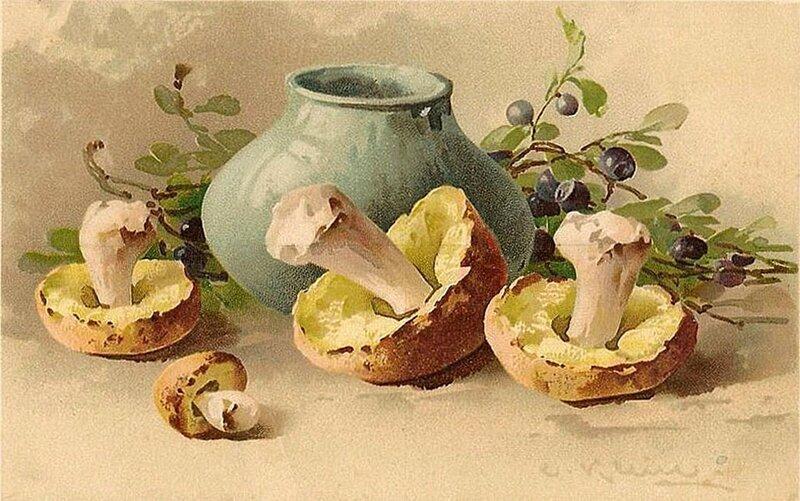 К. Кляйн. 25. Натюрморт с белыми грибами.