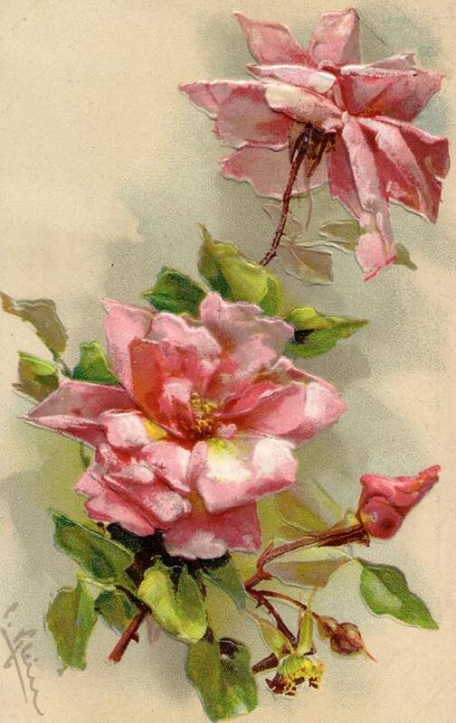 К. Кляйн. 64. Розы.