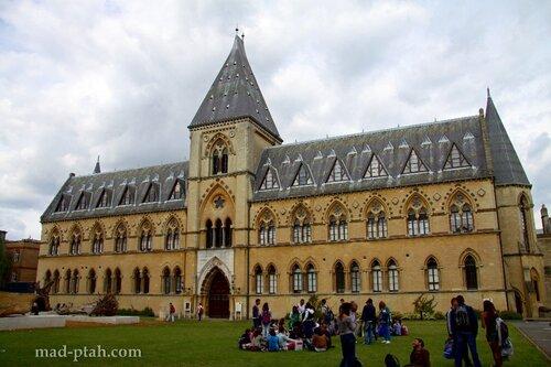 англия, оксфорд, музей естественной истории