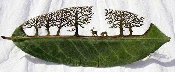 Lorenzo Duran - маленькие шедевры из листьев