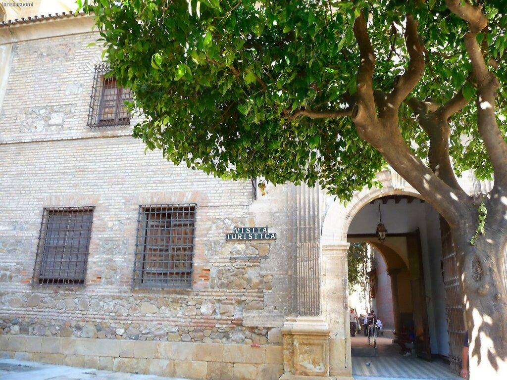 Malaga.  El Catedral. (55).jpg
