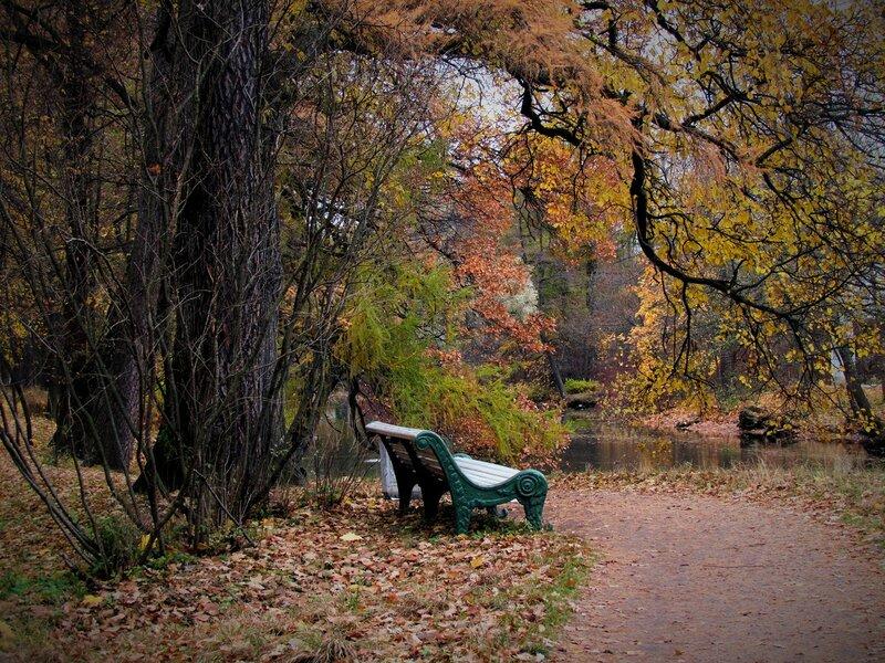 Прогулки в конце октября.