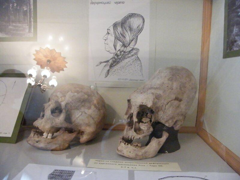 Удлиненный череп. Омск