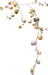 catherinedesigns_R-C23_Branch1Yellow.png