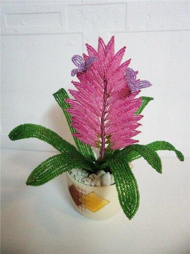 9.Райский цветочек