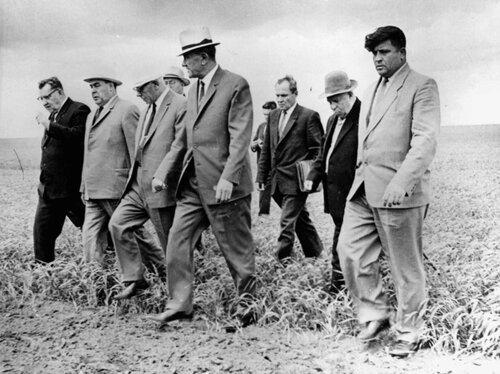 Июнь 1966 года. Бородин,  Брежнев, Подгорный и Кунаев осматривают поля Кустанайской области