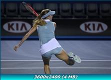 http://img-fotki.yandex.ru/get/4611/13966776.46/0_77439_7140b68e_orig.jpg