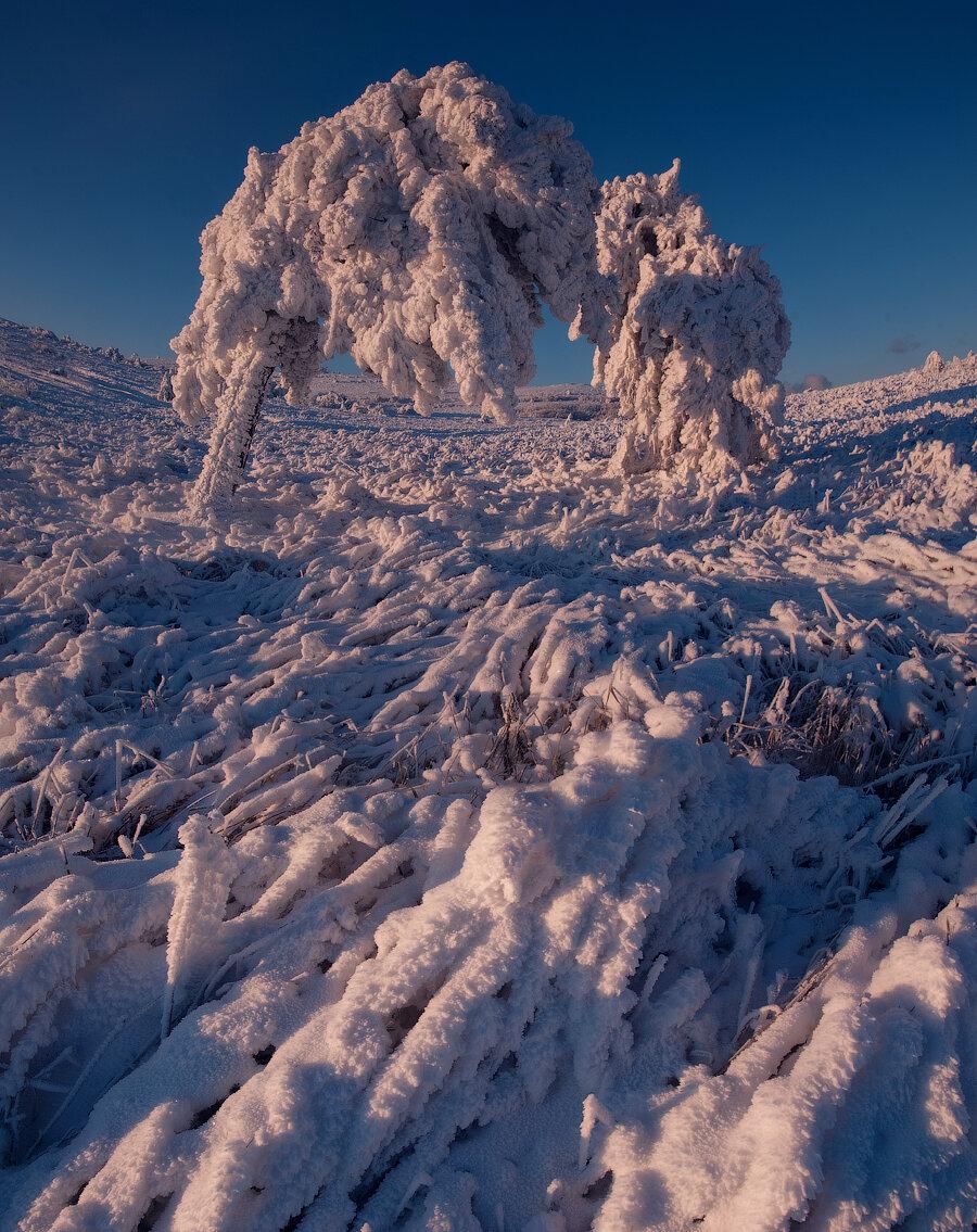 Сказки зимнего Крыма