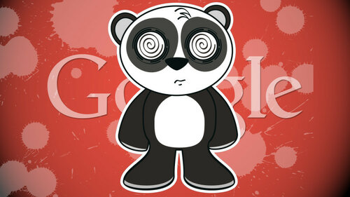 google-panda-hurt-confused3-ss-1920-800x450.jpg