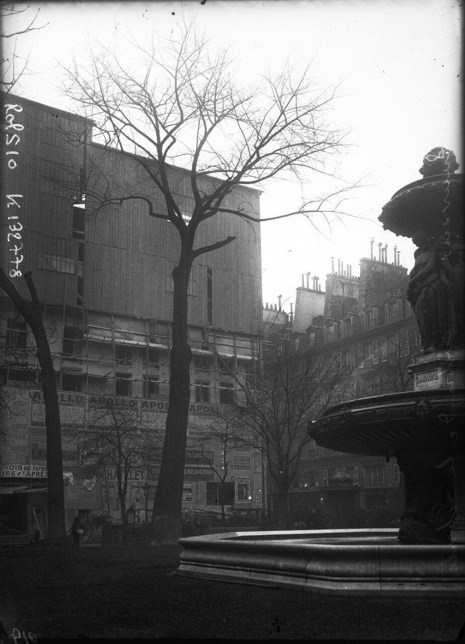 1908. Площадь Лавуа, Дерево Свободы