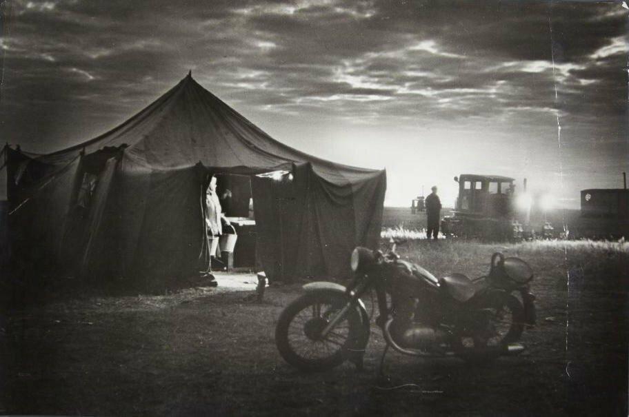 1939. Аркадий Шишкин. Утро на целине
