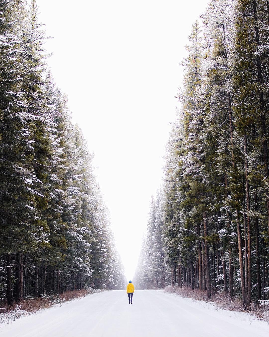 Путешествия и приключения на снимках Стевина Тучивски