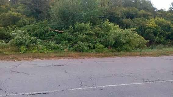 Пьяный водитель погубил своего пассажира в Винницкой области. ФОТОрепортаж
