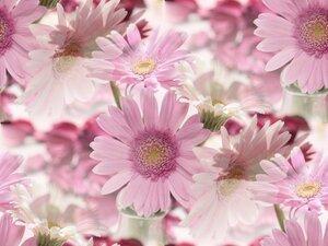 фоны бесшовные-цветочные