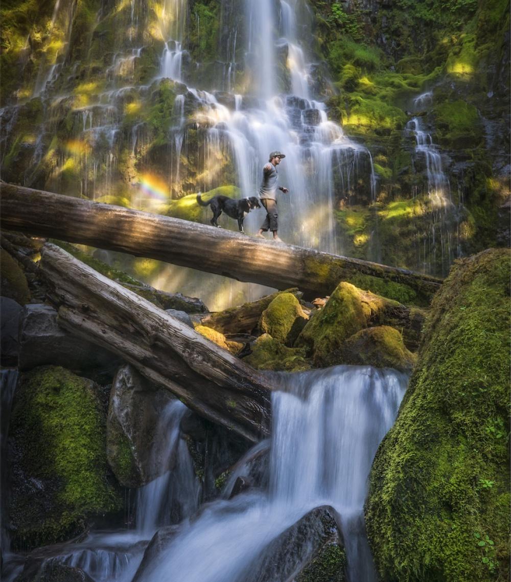 © Andrew Studer/REX/Shutterstock  Лесной водопад вОрегоне.