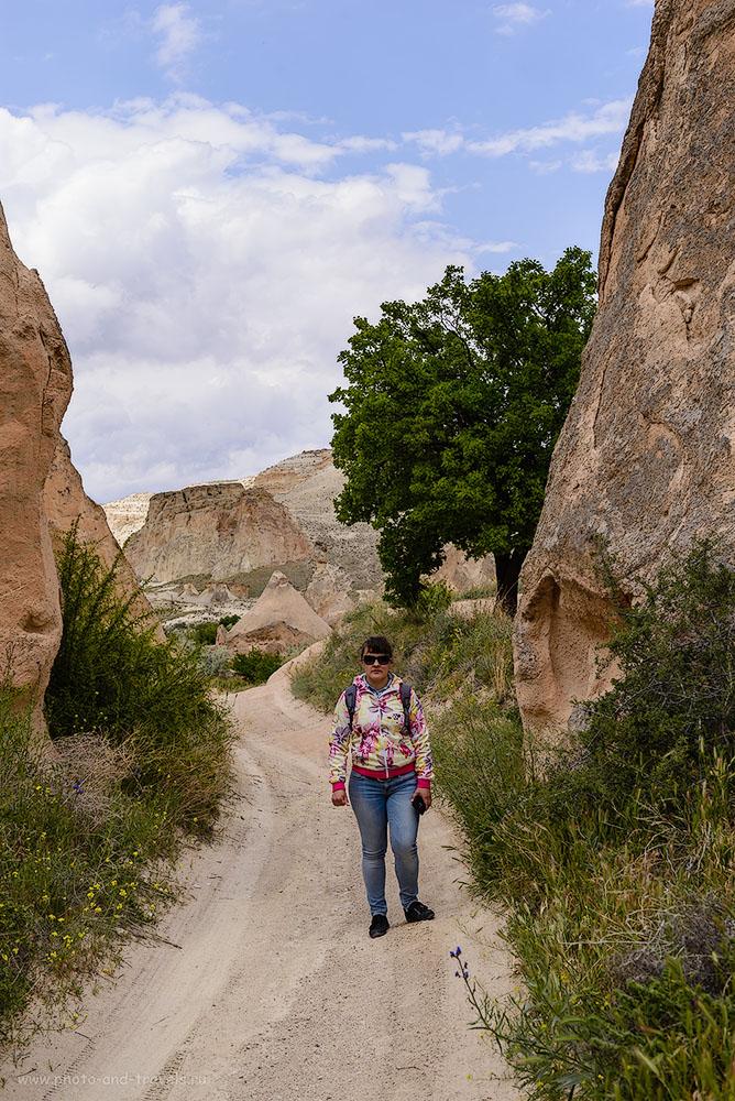 Снимок 19. Гуляя дорогами Каппадокии. На заднем плане – каньон, по которому мы шли от перекрестка, где нас высадил автобус, до долины Пашабаг. 1/500, -0.33, 8.0, 160, 45.