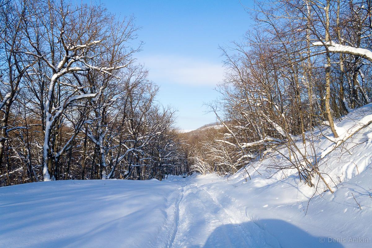 саратов лес кумысная поляна зима покатушка фото 2