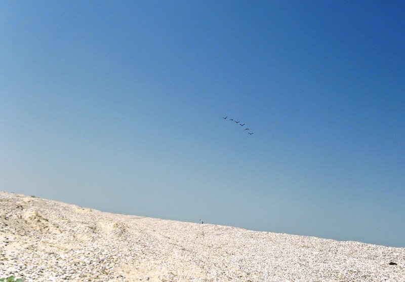 Над песками... Полёт ... SAM_8828.JPG