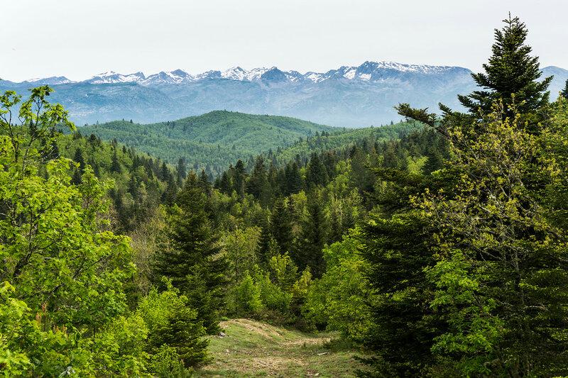 Весенний пейзаж в горах Северный Пинд, Загория, Греция