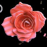 Melaniesthings-bloem1.png