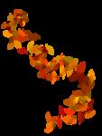 Солнечная осень (2)