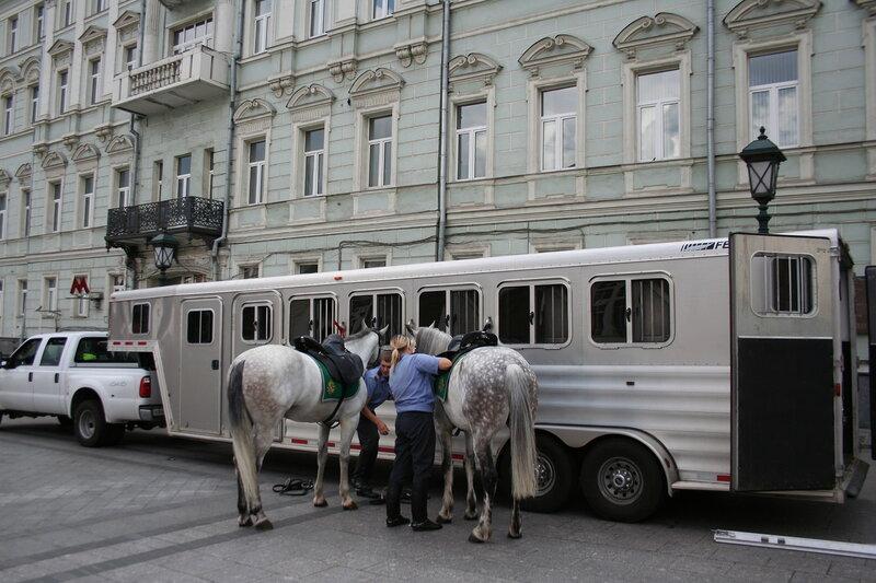 И лошади ездят с комфортом
