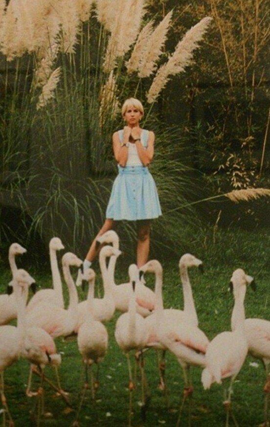 Алёна Свиридова, 1994 год