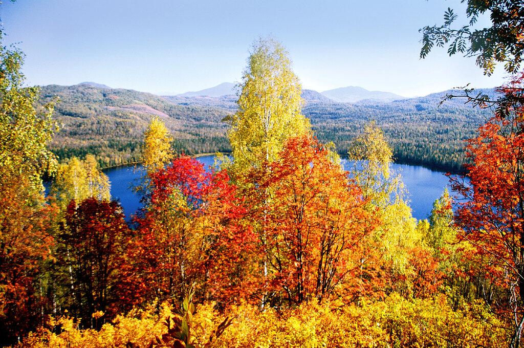 Осенняя палитра.