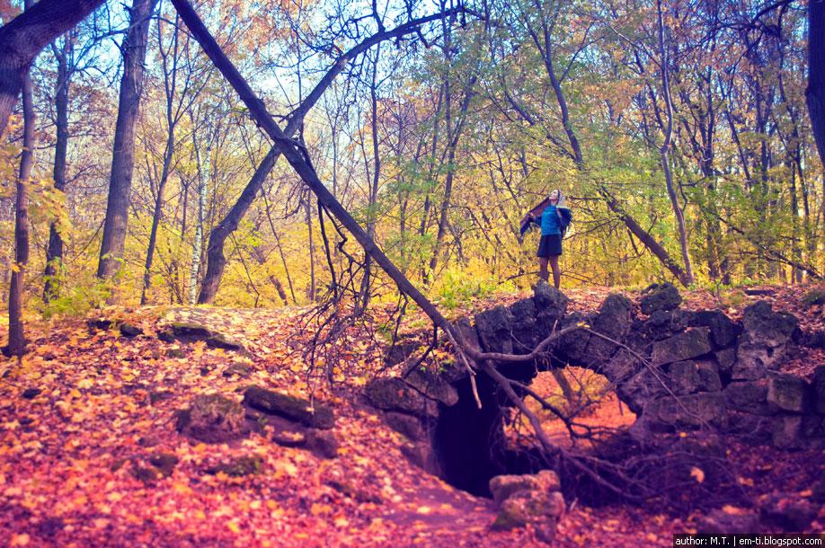 Человек в лесу.