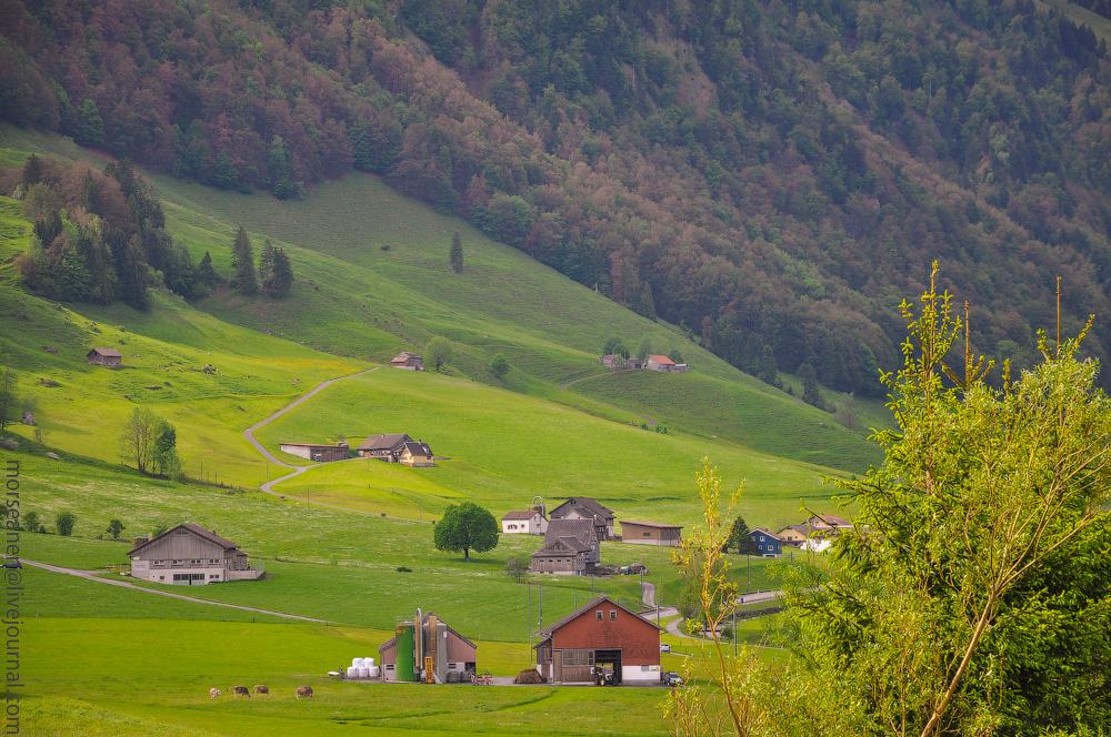 Appelzell-(9).jpg