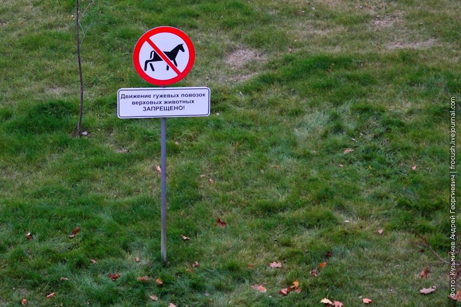 движение гужевых повозок и верховых животных запрещено