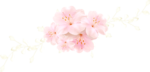 Lilas_Iced-Roses_elmt (73).png