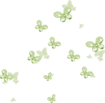 Lilas_Iced-Roses_elmt (2).png