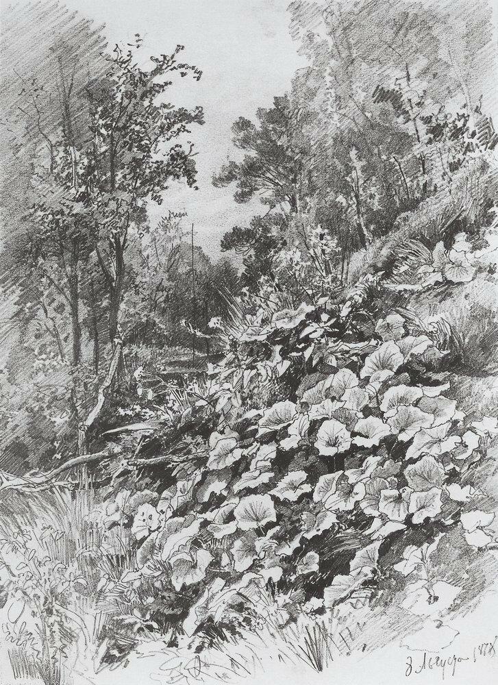 Мать-и-мачеха 1878 31х22,3.jpg