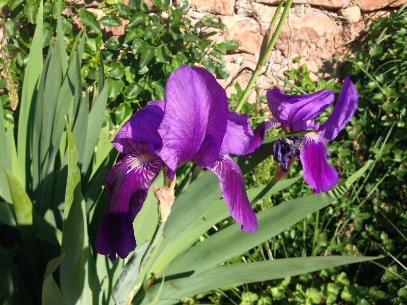 апрель в черногории