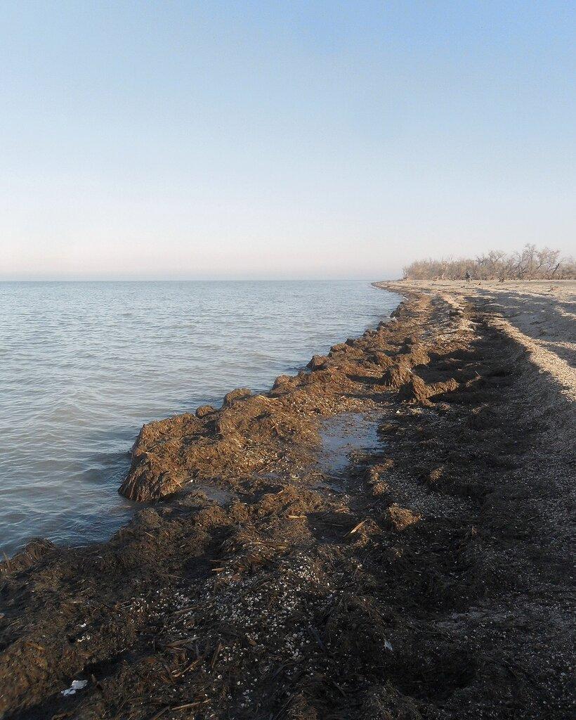 Фото походное, ноябрь, берег Азовского моря, 2014 год