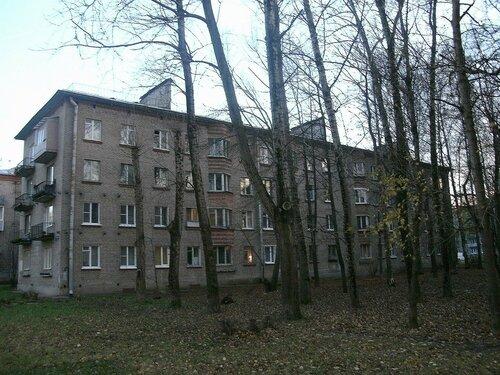 Караваевская ул. 29