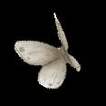 Fairymist_papillons5.png