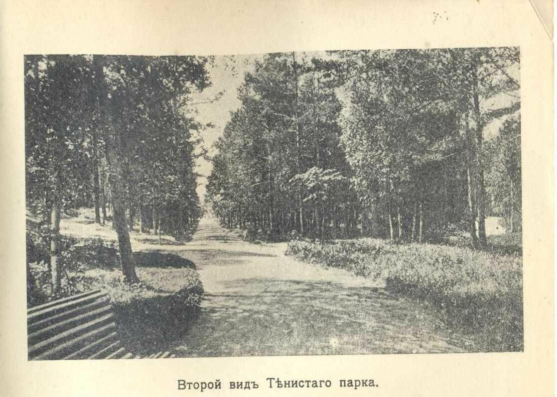 Второй вид Тенистого парка