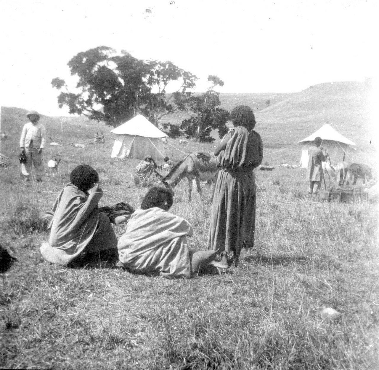 1897. Абиссиния.  Лагерь Чефедонза на дороге Джибутти - Аддис-Абеба